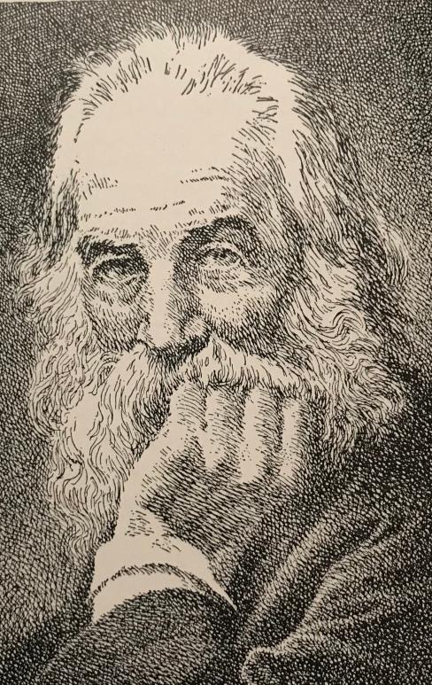 Pen Drawing of Walt Whitman by Kerr Eby