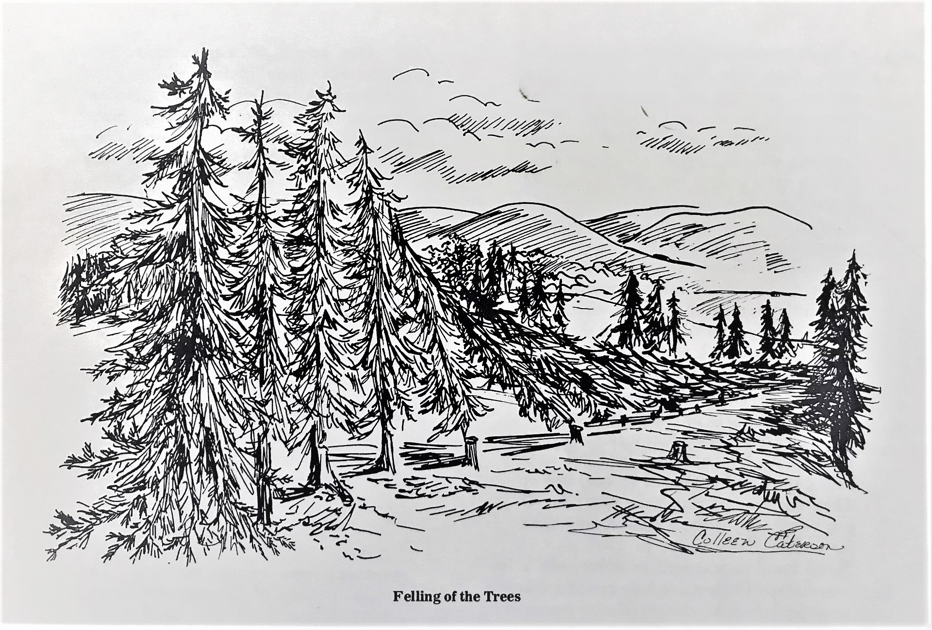Felling of the Trees by Colleen Caterson