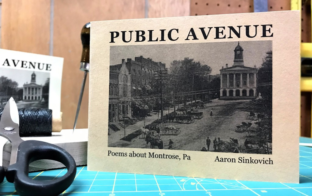 Cover of Public Avenue, Poems about Montrose, Pa